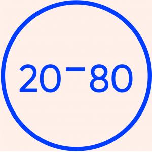 התנדבות בחיבורים 20-80
